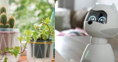 Robot Kiki a samozavlažovací květináč POTR