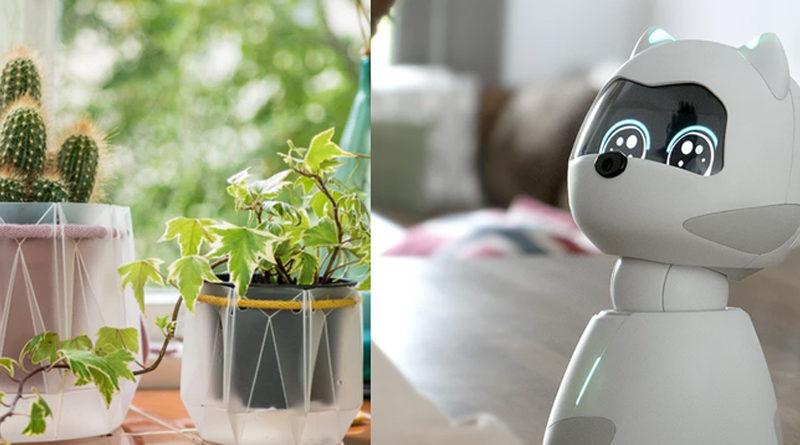 Kickstarter TOP5 #11: Robotický domácí mazlíček; samozavlažovací květináč