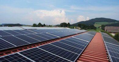 Startup Zelená elektřina